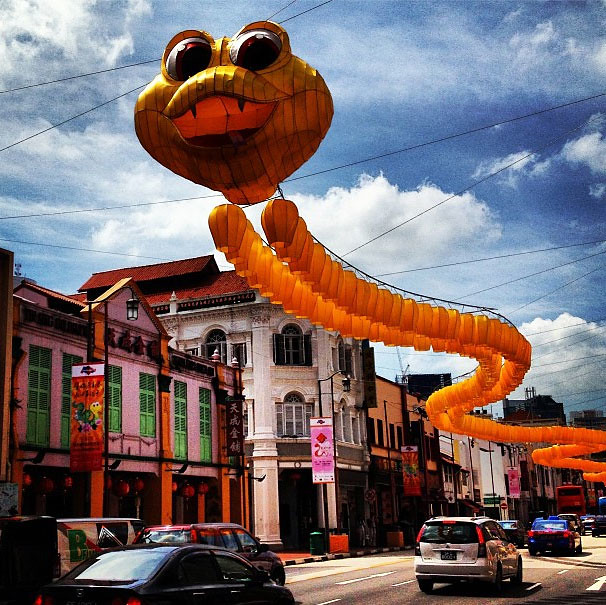 The cute, yet silly-looking snake at Chinatown in Singapore