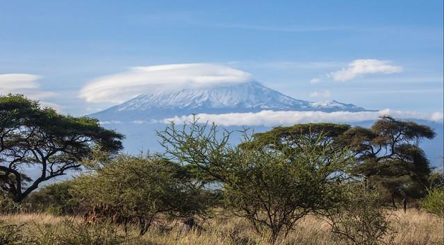 Parque Nacional de Amboseli, Kenia, con el monte Kilimanjaro al fondo
