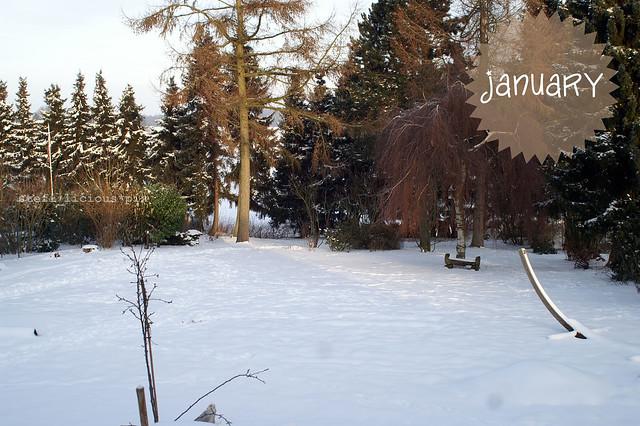 garten_januar