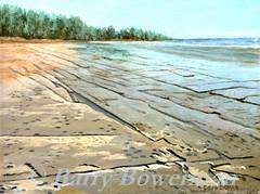 Mosaic at Misery Bay