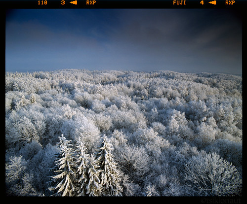 pentax 67 6x7 medium format analog analogue film roll 120 fuji provia 400 400x rxp drum scan drumscan kami slx2001 estonia winter snow froze freeze frozen white blue e6 slide positive dia forest scanview scanmate 3000 pmt photomultipliertube sky cold freezing blueish landscape baltic horizon gnd lee heliopan cpl shpmc 爱沙尼亚 エストニア استونيا شتاء 冬 冬季 雪 ثلج جليد 氷 冰 talv eesti maastik talvine otepää снег эстония tetenal filter hitech 45mm f4 fotokordisti woods