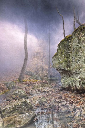 tree art texture nature horizontal fog forest landscape illinois cool rocks stream trail ethereal spiritual hdr enlightened combo shawneenationalforest 2013