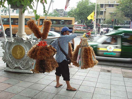 200704120185_feather-duster-vendor