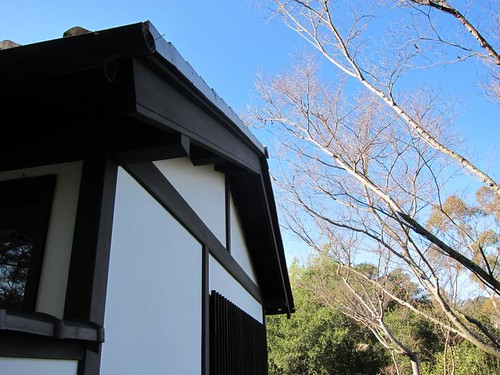 Hakone Japanese Gardens, Saratoga, CA IMG_2323