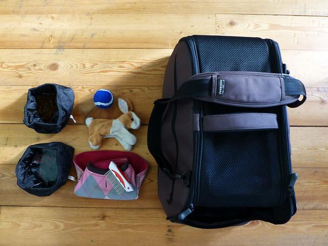 Luna's packing list