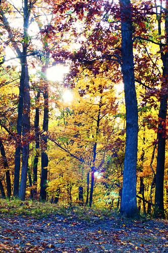 Great River Road Fall Trip