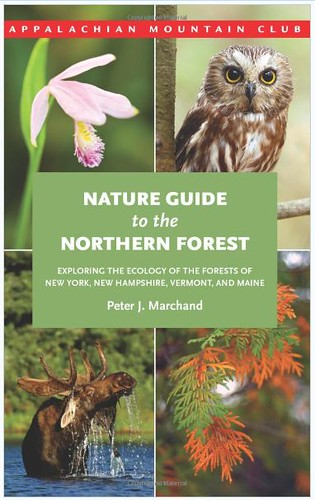 Nature Guide by Megan Lorenz