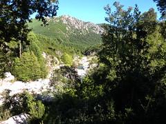 Ancienne bergerie de Sainte-Lucie :  le ruisseau de Sainte-Lucie vers la fin de la balade aquatique sous l'ancienne bergerie