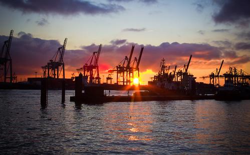 Abendsonne an der Elbe