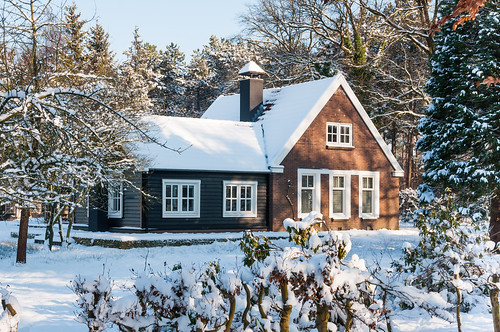 Snowy house in the forest