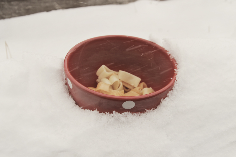 bowl-pasta-in-snow