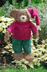 Christmas 'Teddy Bear'