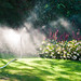 Watering in the Christchurch Botanic Gardens