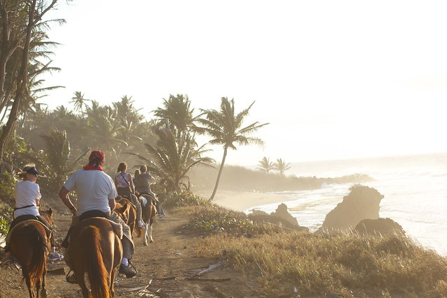 horseback riding in puerto rico
