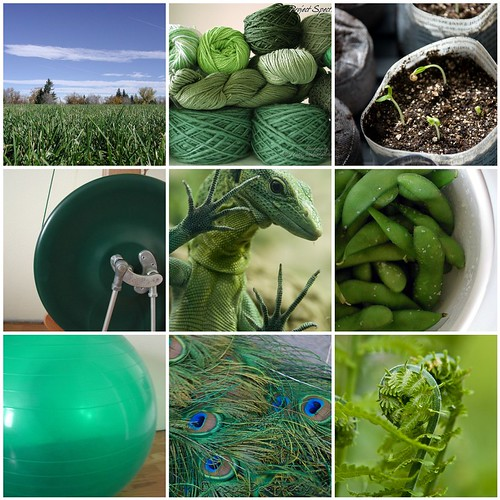 9 Favorite Green Things