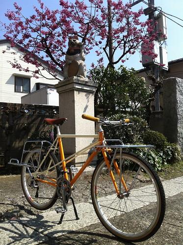 IMG_2629 by cicli KATSUO