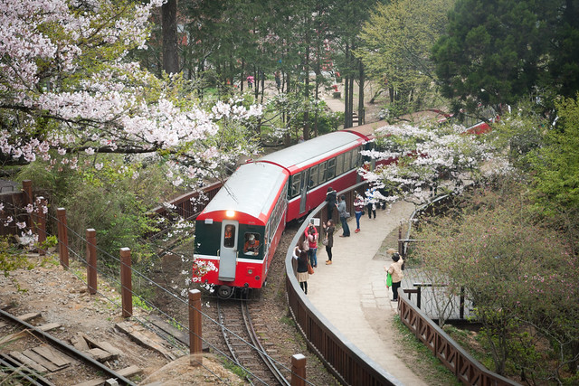 Alishan Forest Train