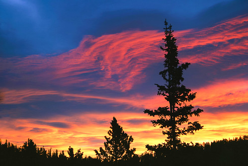 morning blue trees winter red orange clouds forest sunrise flora colorado unitedstates idahosprings mountevanswilderness