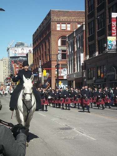 Horses of the St. Patrick's Day Parade (2)