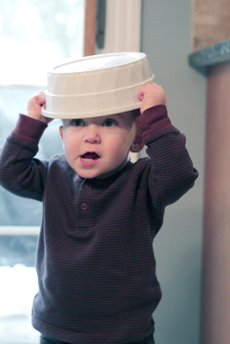 dog bowl hat