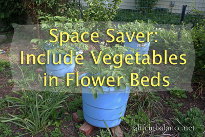 vegetables-in-flower-beds-1