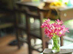 Desk & Rain lily