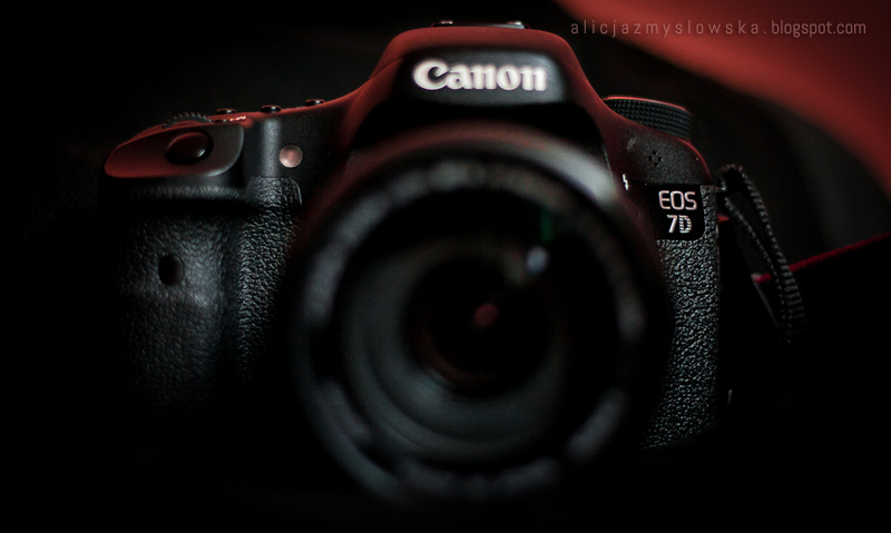 Canon-2695