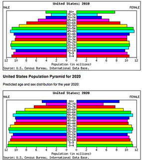 Us population pyramid