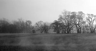 last mist rising