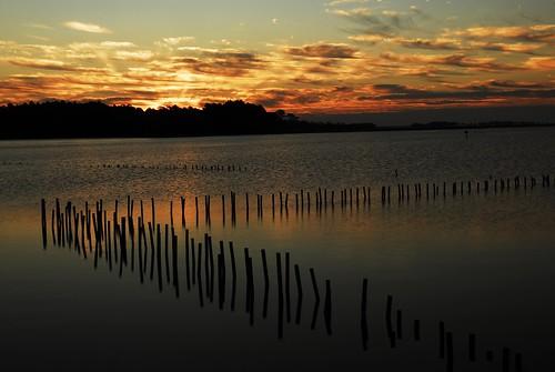 nature sunrise landscape blackwaterwildliferefuge