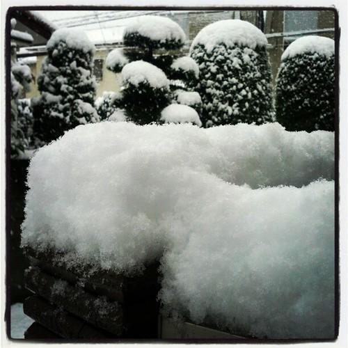 なにこの厚み。あと雪かきのつもりでお湯まいてる人いるけど、それ危険すぎるから…