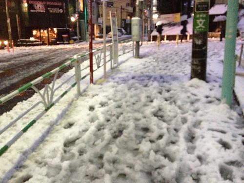 雪が降り積もる 2013/1/14