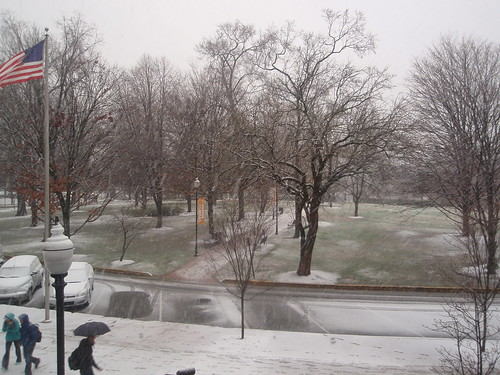snowing in circle park