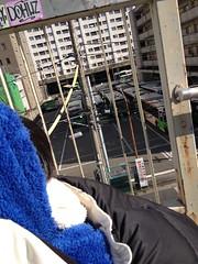 バス見る 2013/1/20