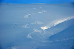 melting(0.0), polar ice cap(0.0), sea ice(0.0), iceberg(0.0), arctic ocean(1.0), arctic(1.0), piste(1.0), glacial landform(1.0), ice cap(1.0), ice(1.0),