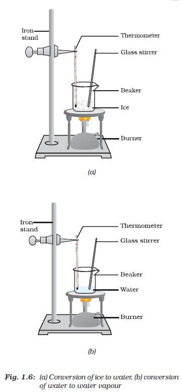 ncert class ix science chapter 1 matter in our