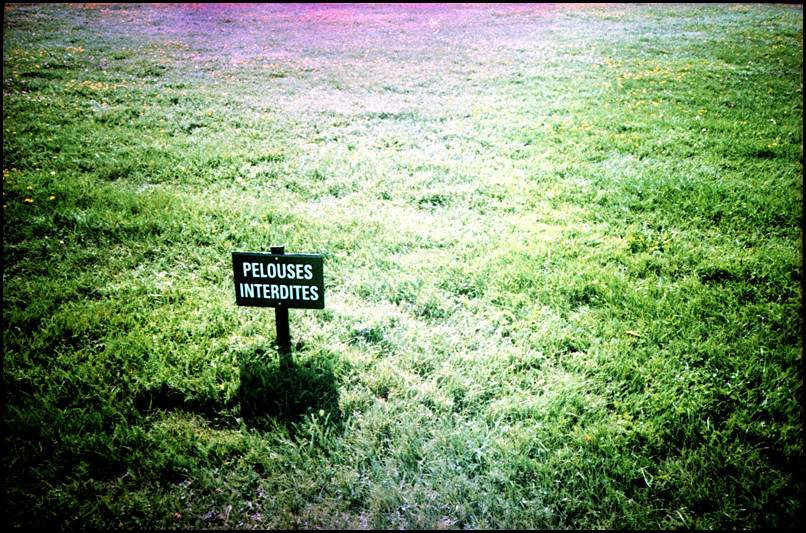 Forbidden lawn