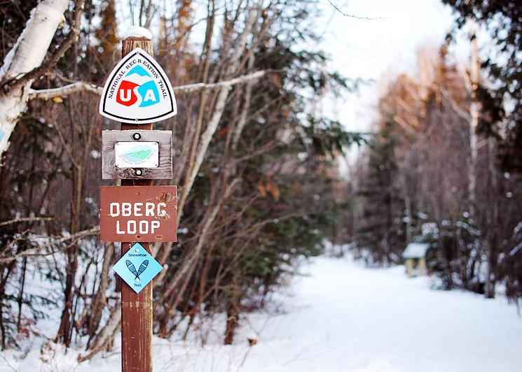Oberg Loop