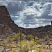 Small photo of Ajo pano