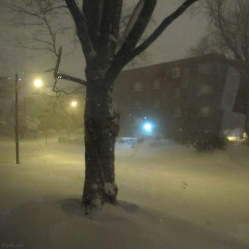 Blizzard by Coyoty