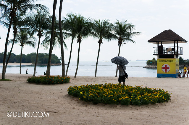 Sentosa Flowers 2013 - Flowers in the Sand