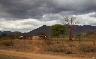 Abandoned village and baobab tree