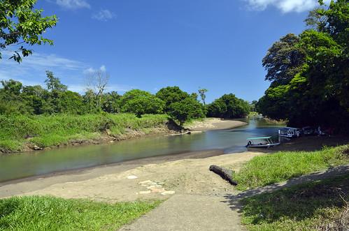 la costarica provincia paesaggi tortuguero limon canali pavona