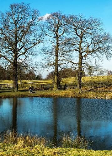 Hardwick Park 3 by birbee