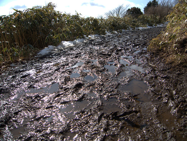泥のトレイル