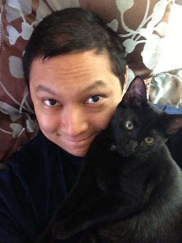 Martha Kitten leaning on my face
