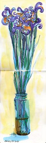 January Irises