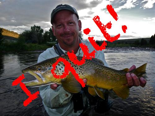 I 39 m quitting fly fishing again orvis news for Lake bryan fishing