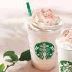 Starbucks Sakura 2013 Limited edition.
