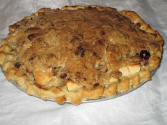 Apple Cranberry pecan pie by Teckelcar
